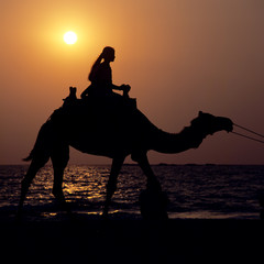 Frau reitet auf Dromedar