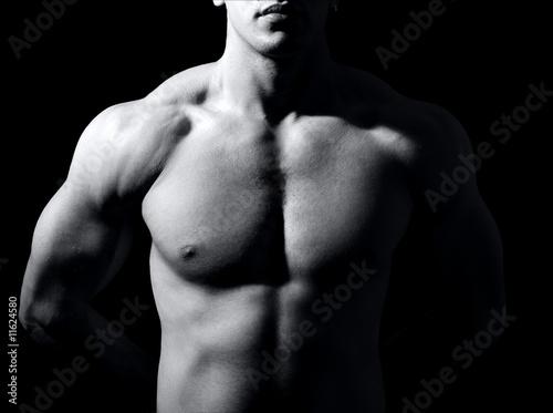 Fototapeten,mann,männlich,anprobieren,muskel