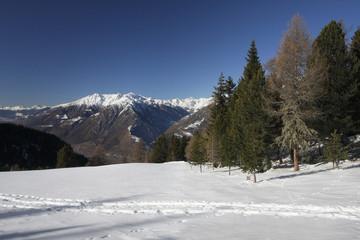 Winterlandschaft mit Gebirgspanorama