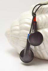 Ohrhöhrer im Behälter in Muschelform