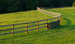 Winding Fence In Meadow