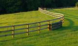 Fototapety Winding Fence In Meadow