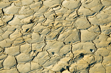 Background of dried surface of lake