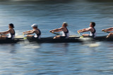 Teamwork, rowers in a rowing boat pulling in harmony poster
