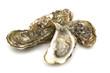 Leinwanddruck Bild - opened oysters on white background