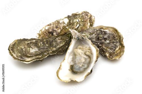 Leinwanddruck Bild opened oysters on white background
