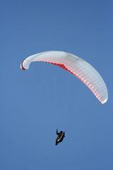 9054 - Paraglider