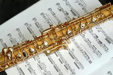Oboe, Detail