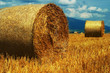 Golden Hay Bales on a perfect sunny day