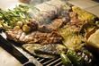 Carne asada a la parrilla con nopales, queso y chiles. México - 11668122
