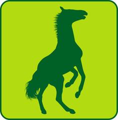 Wildpferd Green