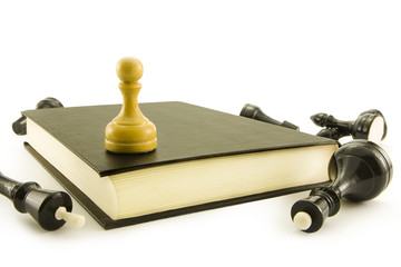 Chess lay around of the book on which there is a pawn