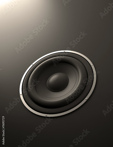 Speaker abstract