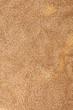Brown Cotten Towel Texture