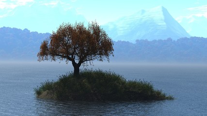 Small island with soltary tree