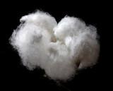 fluffy white poster