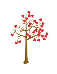 Scarlet hearts tree
