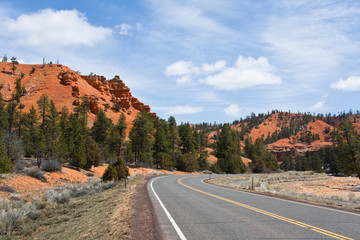 Road into Red Canyon