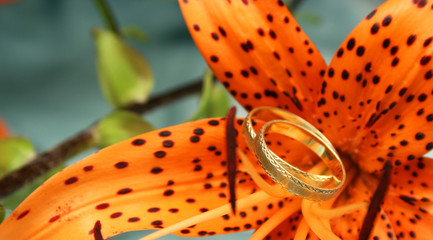 Wedding ring and lily