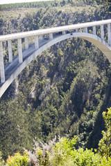 Bloukrans River bridge (216 m)