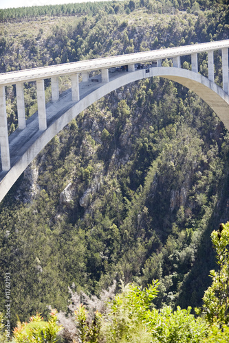 Bloukrans River bridge (216 m)