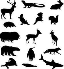 silhouettes wild animals Illustrations  2