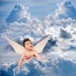 petit ange aux yeux bleus