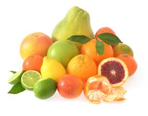 Arrangement mit Zitrusfrüchten/display of citrus fruits