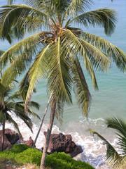 Kerala Coast 1