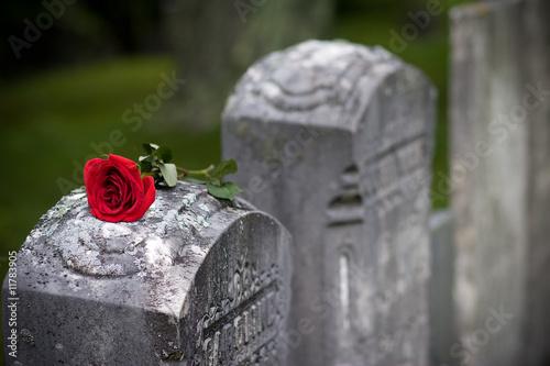 Fotobehang Historisch mon. Love and Loss (Angled)