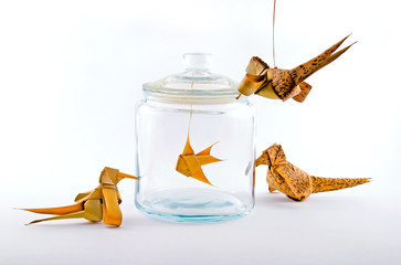 Birds around a fish in a glass jar