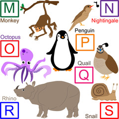 Animal alphabet, part 3 of 4