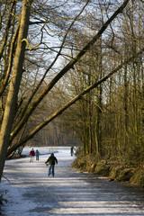 skating at natural ice