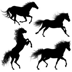 Cavalli Sagome-Horse shapes-Cheval vectoriel
