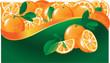 Fruit fresh orange