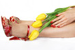 Feet and hands of a young woman with red nails and yellow tulips