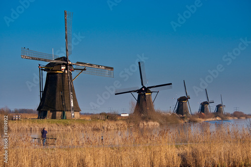 beautiful windmill landscape at kinderdijk