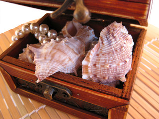 Chest with pearl and seashells