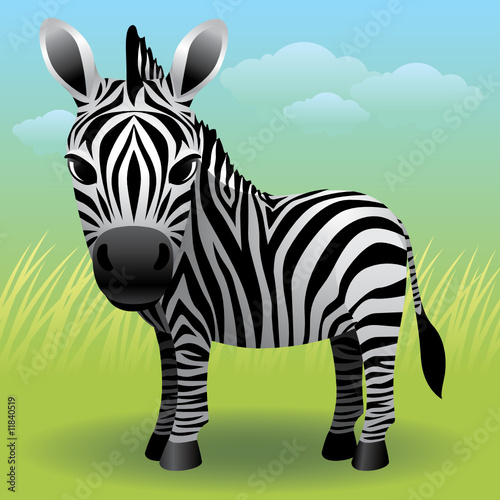 Fotobehang Zoo Baby Animal collection: Zebra. More animals in my gallery.