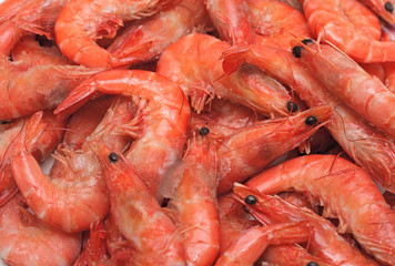 Frozen fresh shrimps for sale at a market