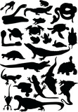 reptile and amphibian silhouettes poster