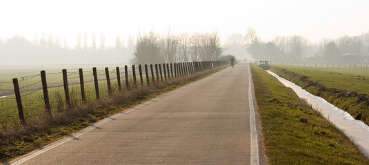 Polderroad on winterday