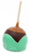 Grasshopper Candied Apple