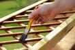 Malerpinsel - paintbrush 12