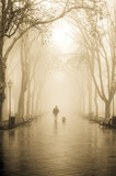 Walking men with dog in fog