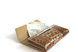 Brown croco  leather wallet with euros isolates on white