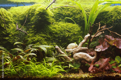 Aluminium Water planten Decorative aquarium