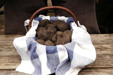 lalbenque marché aux truffes