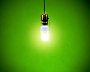 Compact Fluoresent Bulb - Hanging