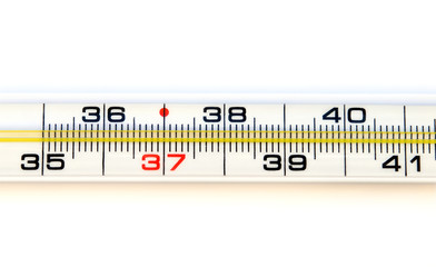 Medical thermometer scale